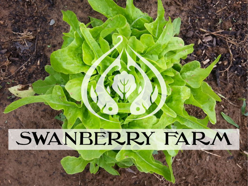 Swanberry Farms Greens